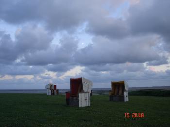 nördliche Strandkörbe