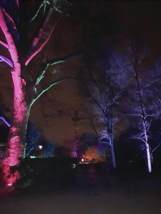Luisenpark bei Nacht